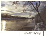 a winter morning at river spey